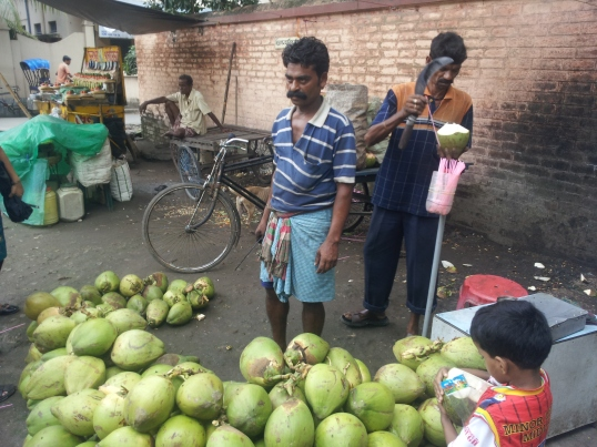 Coconut vendor with Coconuts in their first form