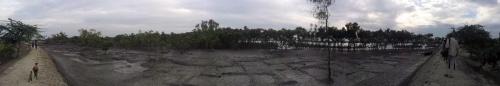 Low tide near Eco-village