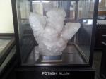 Potash Allum crystal at Indian Museum