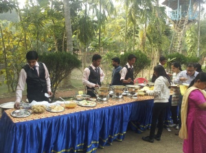 Open buffet at picnic